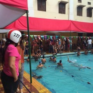 YMCA swim meets